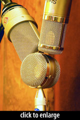 Blue Bottle, Neumann TLM103, and Stellar CM5