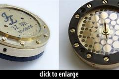 JZ GDC12 capsule