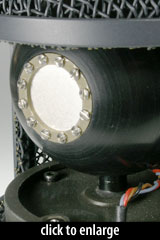 Neumann TLM50 Capsule