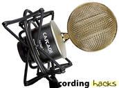 Cascade Microphones Gomez